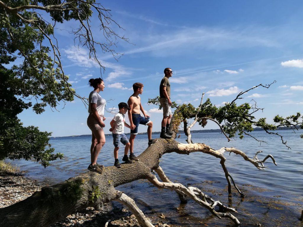 Kinderen op de boomstam